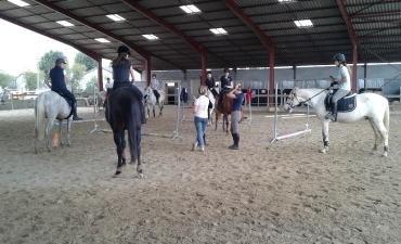 centre equestre les fedies_2